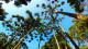 Refúgio Mantiqueira - A hospedagem e o verde da região formam uma parceria de intensa harmonia.
